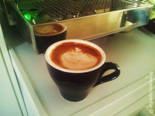 Has Bean Back to the Future Espresso, Rainbow punainen laktoositon maito