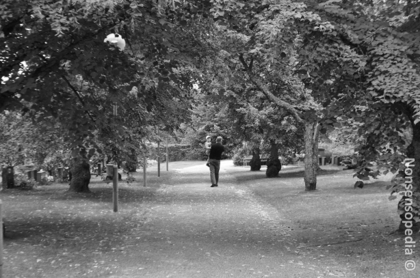 Käynti hautausmaalla
