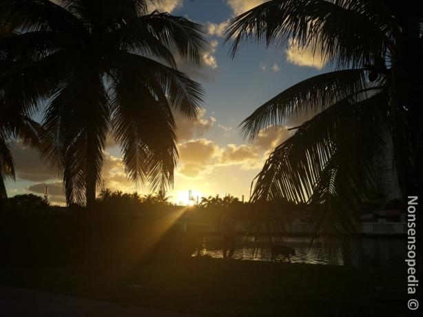 Ilta aurinkoa