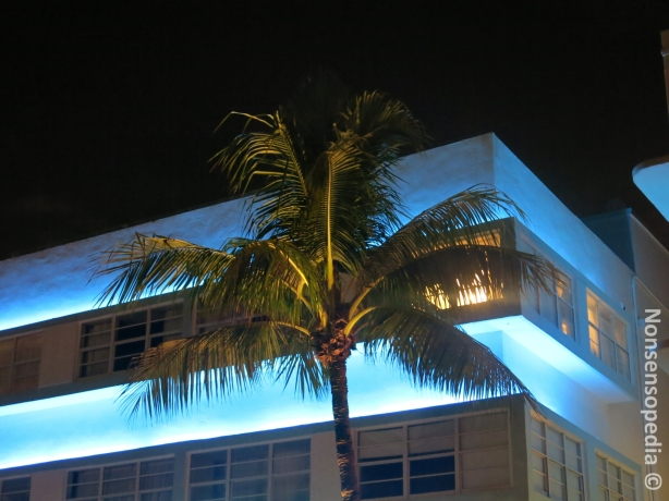 The palmu