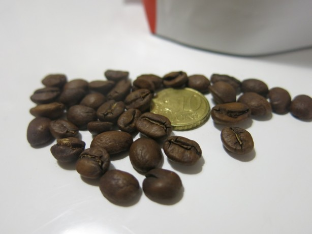 Costa Rican pavut