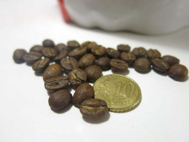 Guatemalan pavut